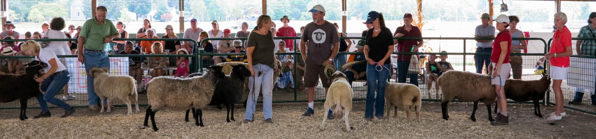 Garden State Sheep Breeders